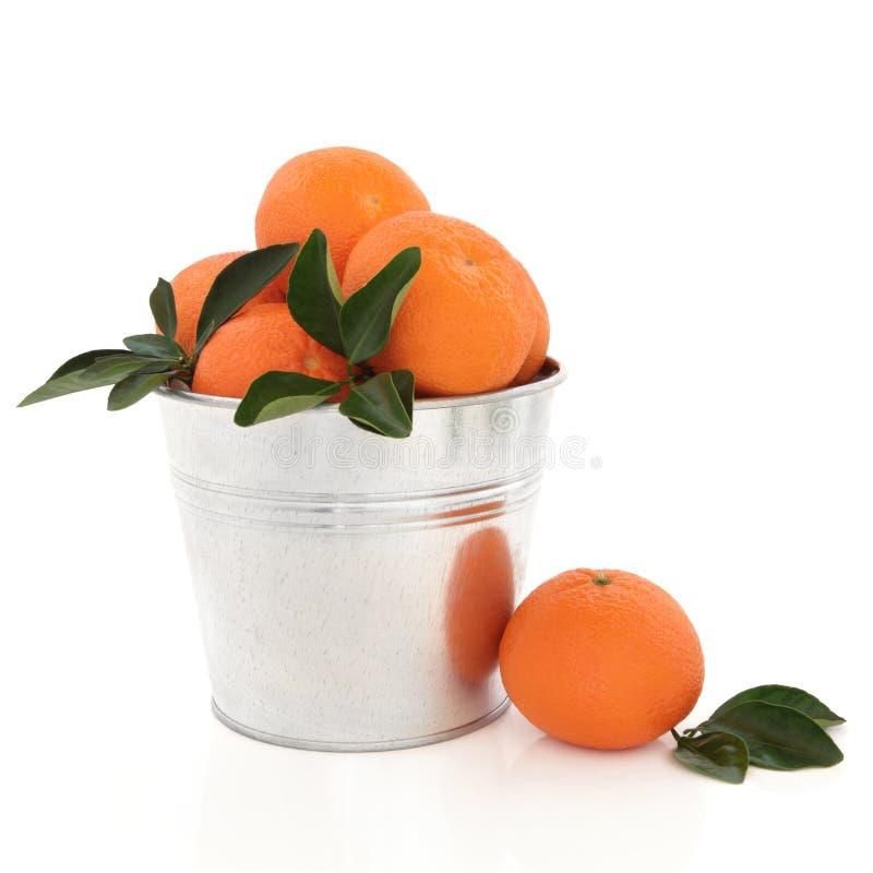 Fruit de mandarine photo stock