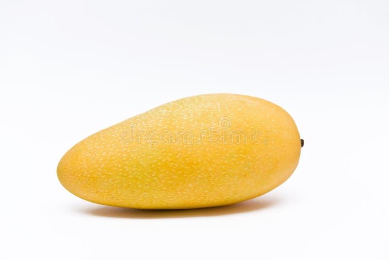 Fruit de mangue images libres de droits