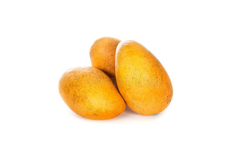 Fruit de mangue avec la feuille d'isolement sur le fond blanc Photo professionnelle de studio la vie toujours des mangues mûres j images stock