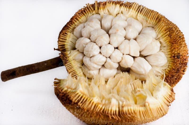 Fruit de Marang photographie stock