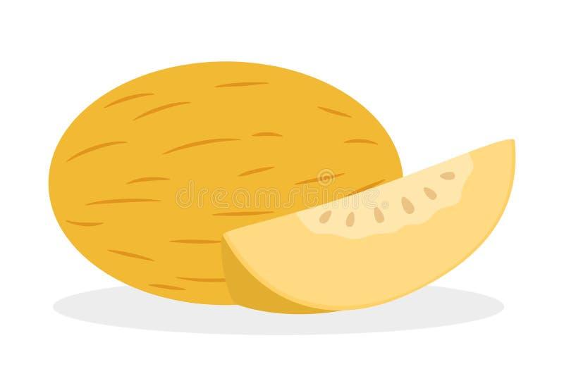 Fruit de melon Cantaloup jaune, dessert juteux frais illustration de vecteur