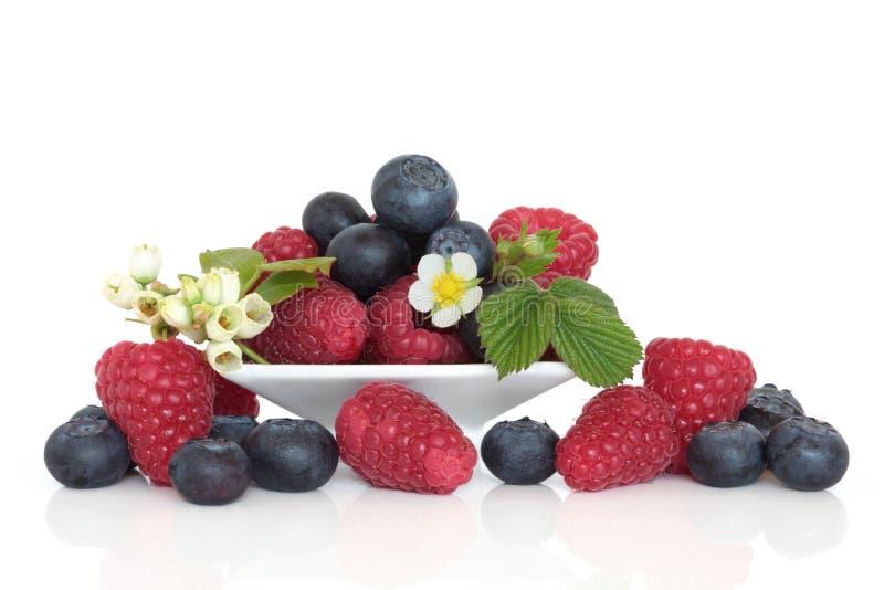 Fruit de myrtille et de framboise images stock