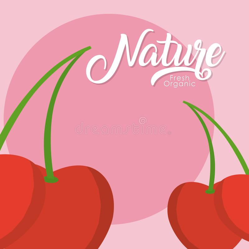 Fruit de nature de cerises illustration stock
