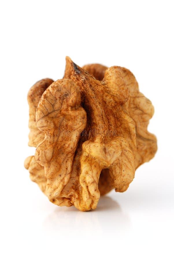 Fruit de noix image libre de droits