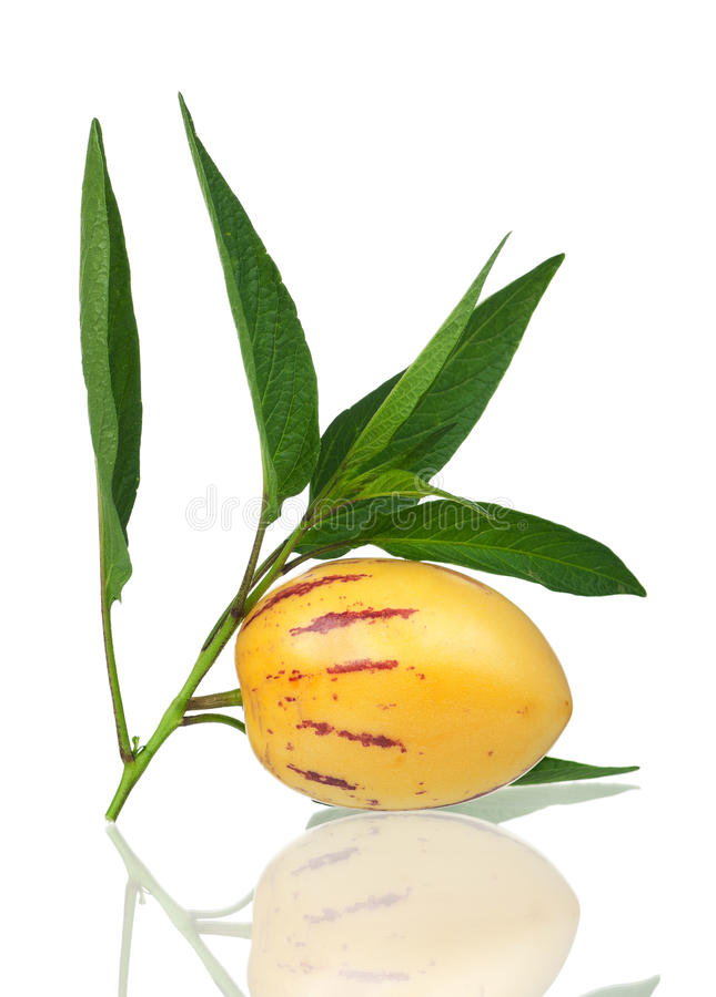 Fruit de Pepino images libres de droits