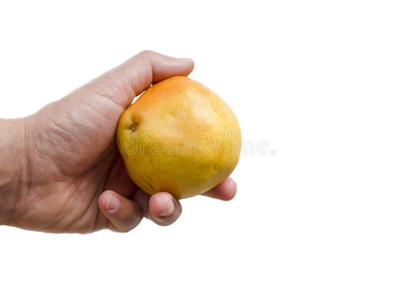 Fruit de poire de la prise une de main d'homme sur le fond blanc d'isolement photo stock