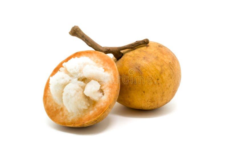 Download Fruit De Santol D'isolement Sur Le Fond Blanc Photo stock - Image du membre, vitamine: 56490562