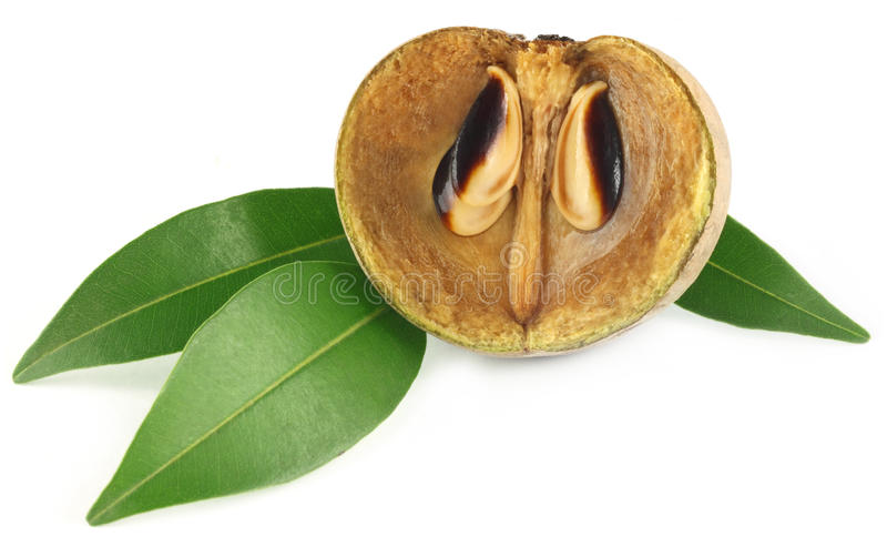 Fruit de sapotille photographie stock libre de droits