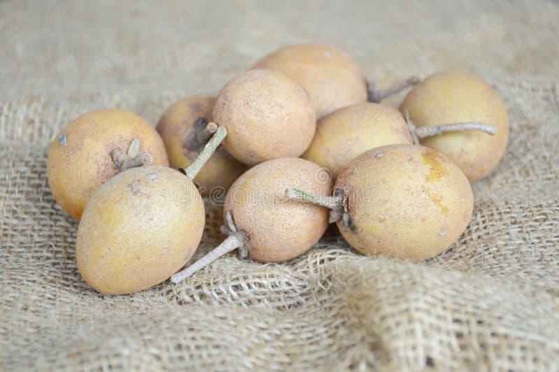 Fruit de sapotille images stock