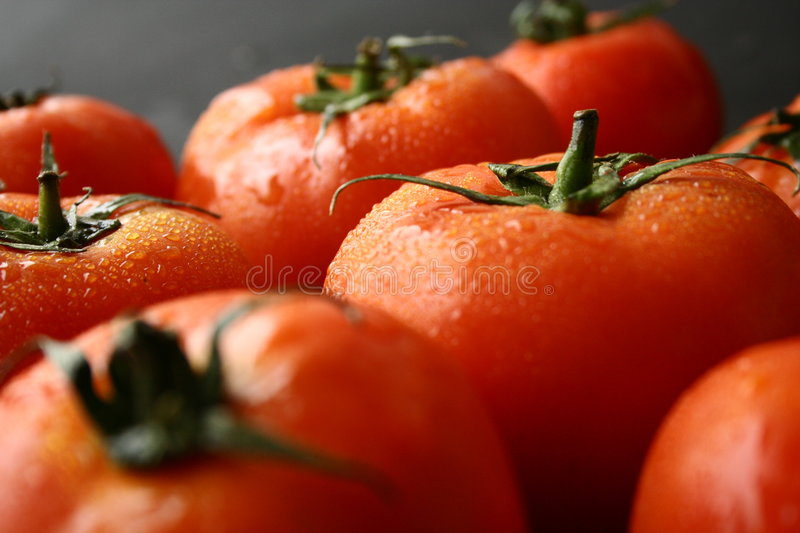 fruit de tomates photo stock