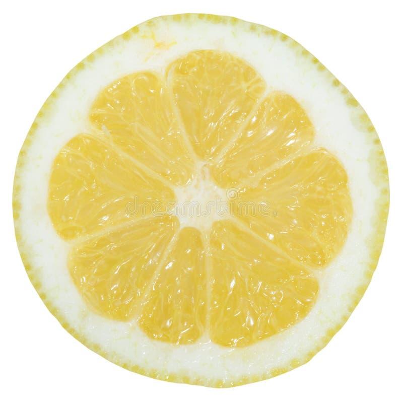 Fruit de tranche de citron coupé en tranches d'isolement sur le blanc photographie stock libre de droits