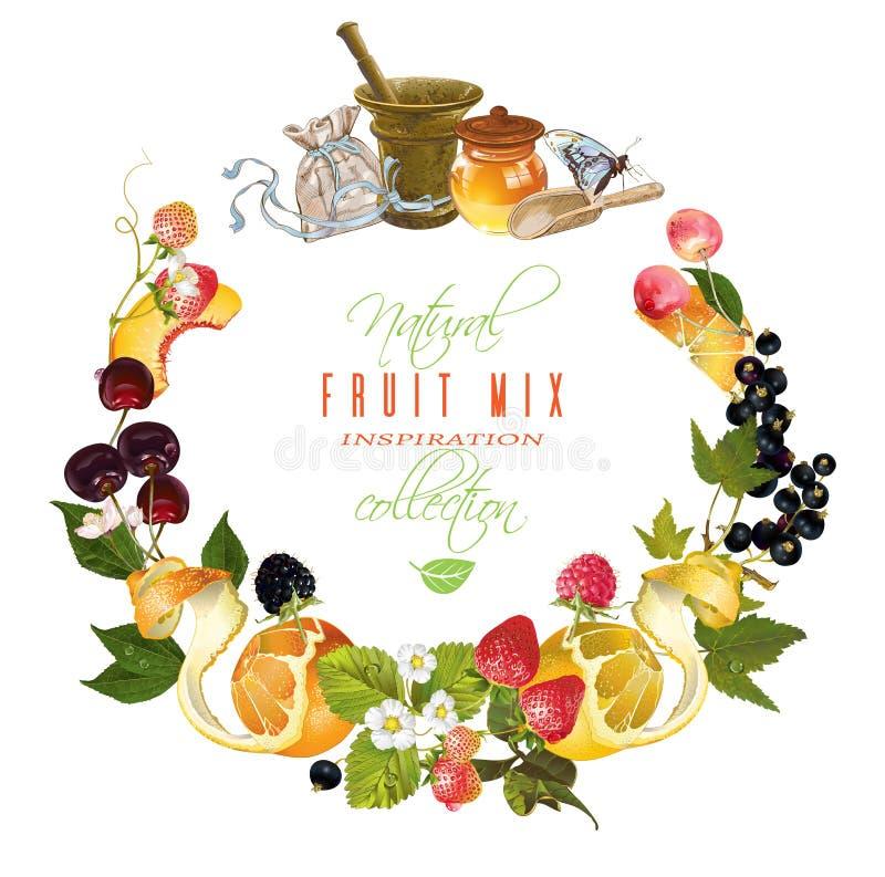 Fruit en bessenbanner stock illustratie