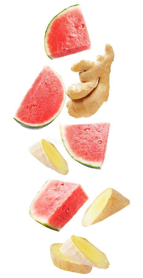 fruit et gingembre de flottement de pastèque d'isolement sur le fond blanc photos libres de droits