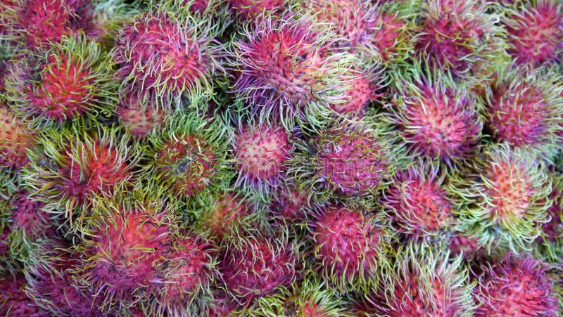 Fruit exotique image stock