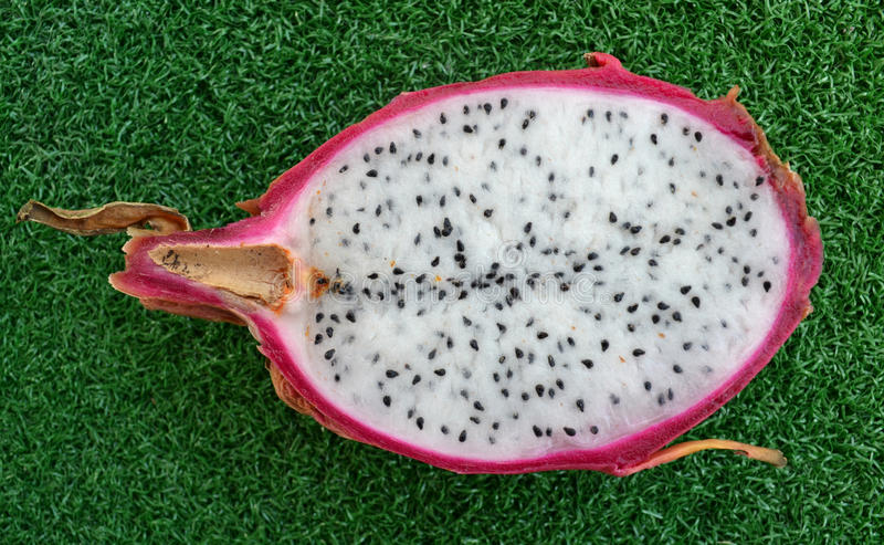 fruit exotique de pitaya photographie stock libre de droits