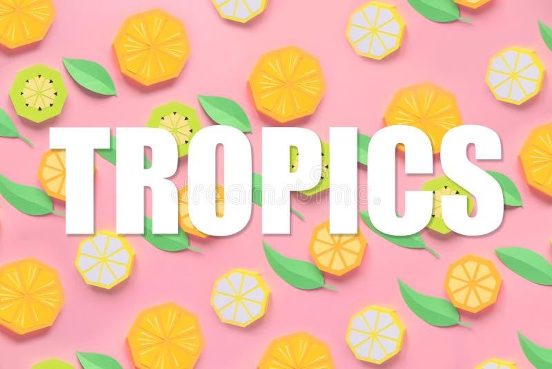 Fruit fait de papier Fond rose L? pi?ce du ` s pour l'inscription tropiques Configuration plate Orange, citron illustration libre de droits