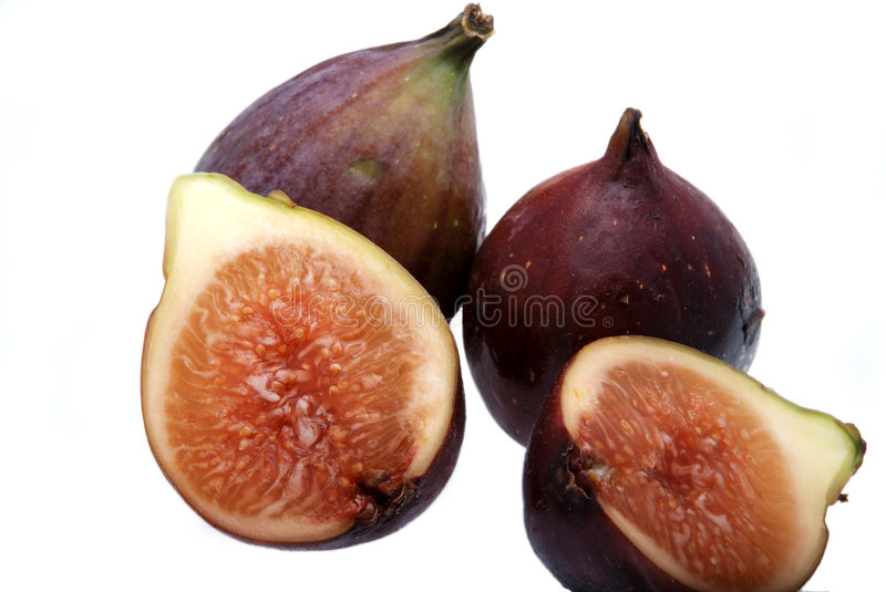 Fruit fig tree royalty free stock photography