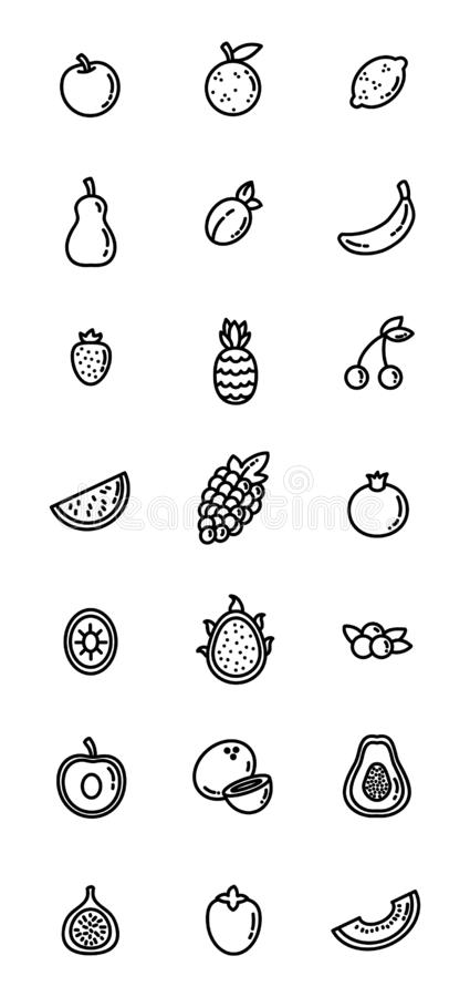 Fruit flat design vector icon set. Collection of outline symbols isolated on white background stock illustration