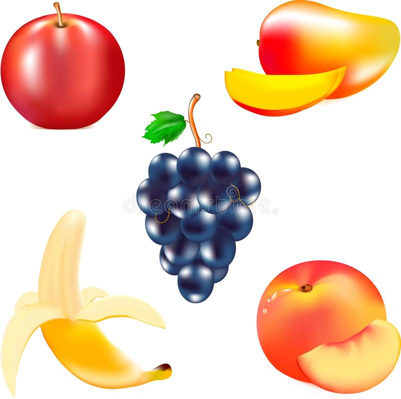 Fruit for food, mature banana, tasty mango, juicy fruit, red apple, a cluster of black grapes, a. Mature juicy fruit, red mature apple, yellow banana, grapes stock illustration