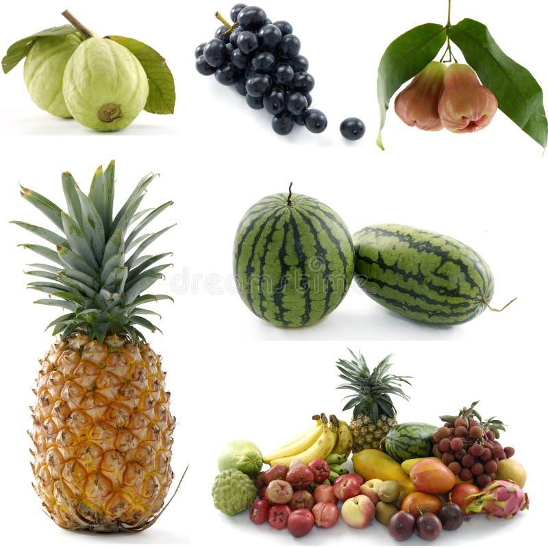 Download Fruit frais image stock. Image du sain, mangue, coloré - 8670331
