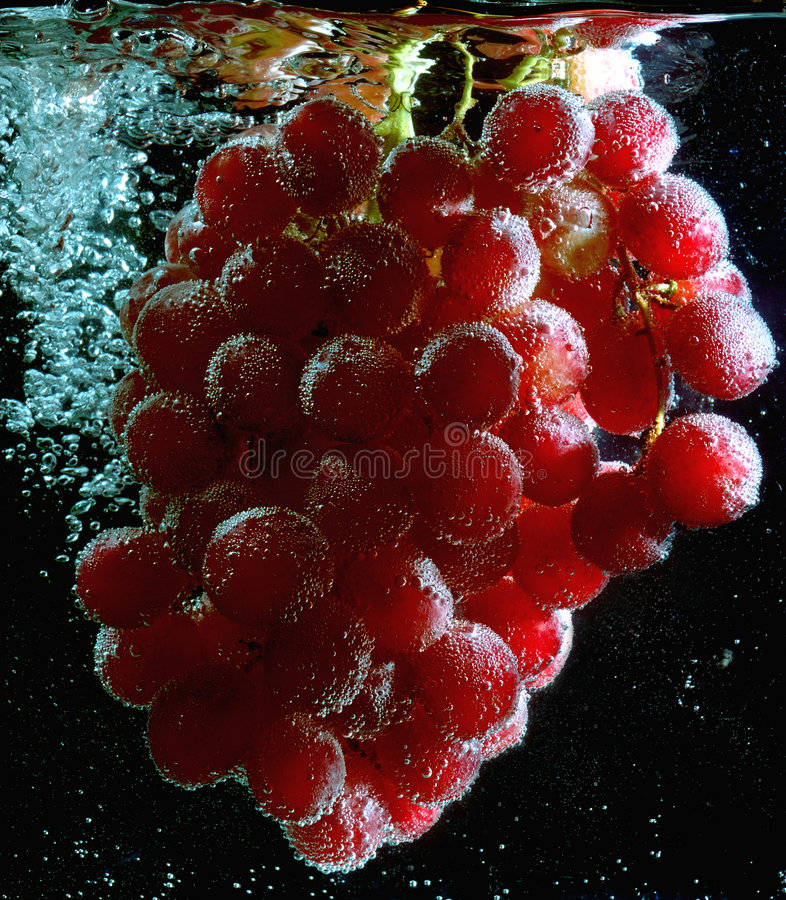 Download Fruit grape stock image. Image of cold, alcohol, agriculture - 3480153