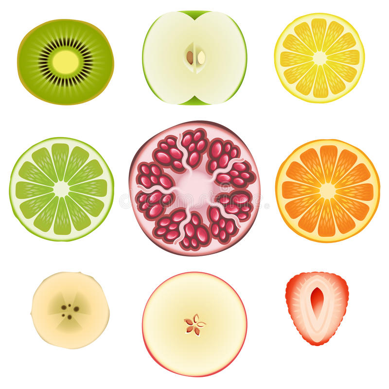 Download Fruit Halves Set One stock vector. Image of food, diet - 25433054