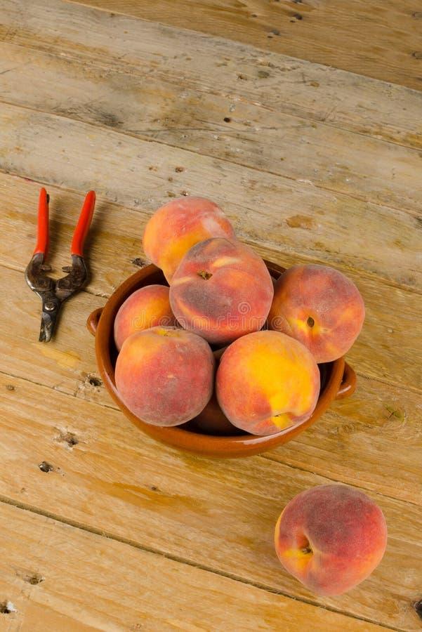 Fruit harvest stock photos