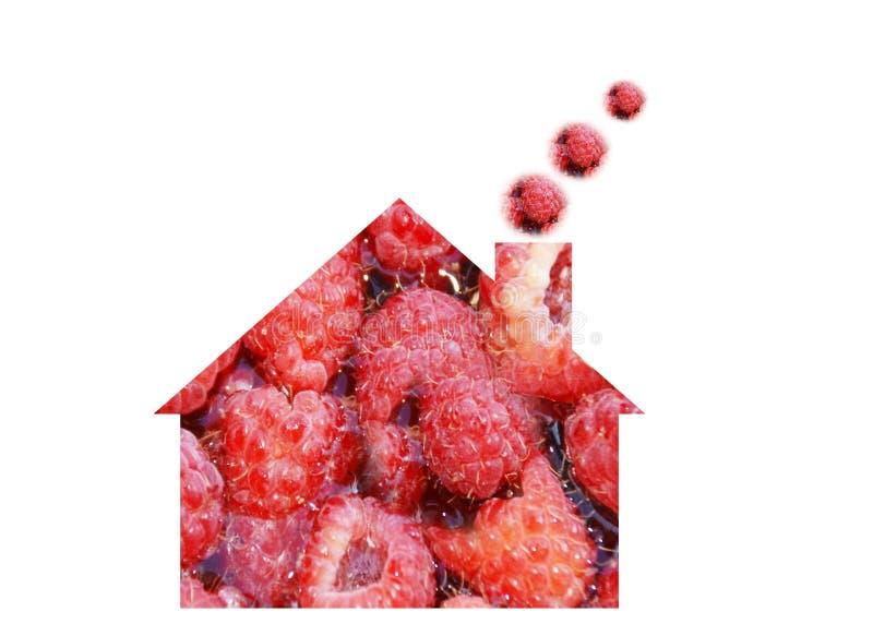 Fruit house royalty free stock photo