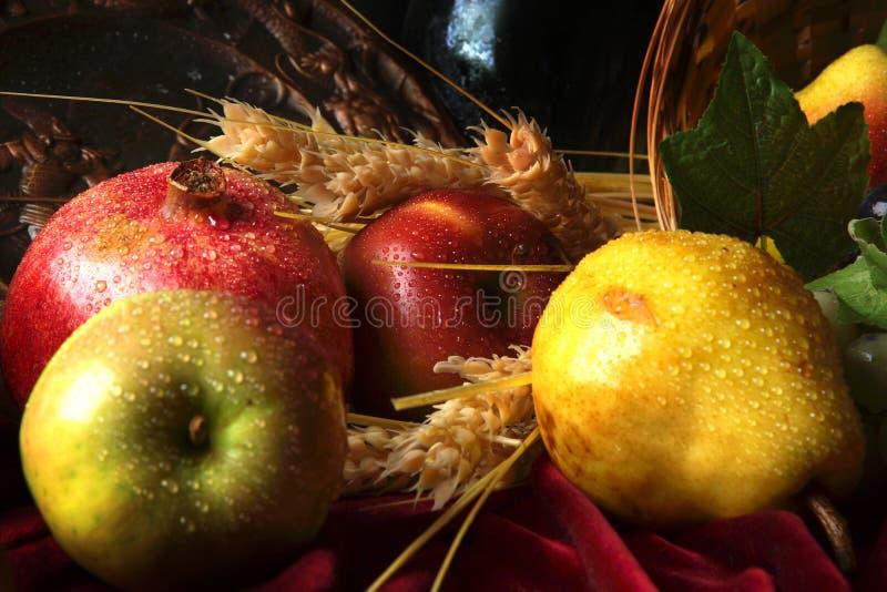 Fruit humide dans les gouttelettes de l'eau, une partie de la vie immobile photo libre de droits