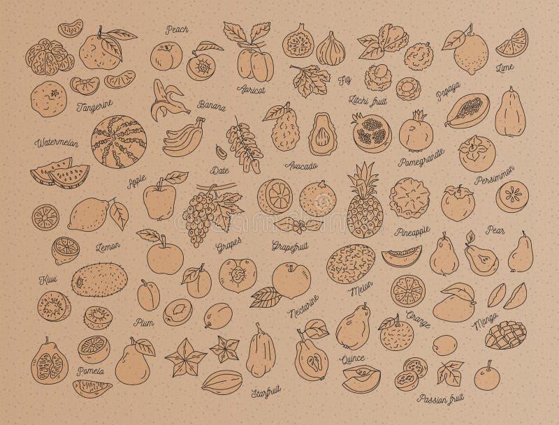 Fruit icon, Hand-drawn set of fruits on kraft paper, cardboard. Menu design template. Vector illustration royalty free illustration