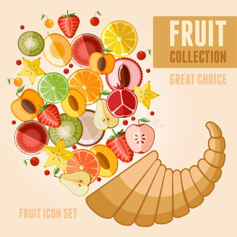 Fruit icon set royalty free illustration