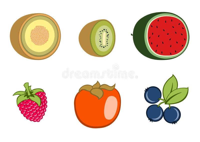 Fruit icons vector illustration