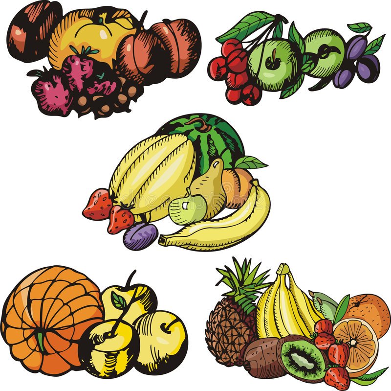 Fruit illustration series. A set of 5 vector illustrations of various fruits royalty free illustration