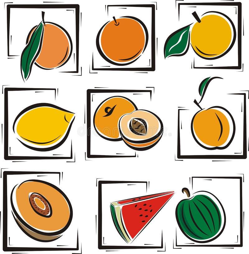 Fruit illustration series. A set of 9 vector illustrations of various fruits vector illustration