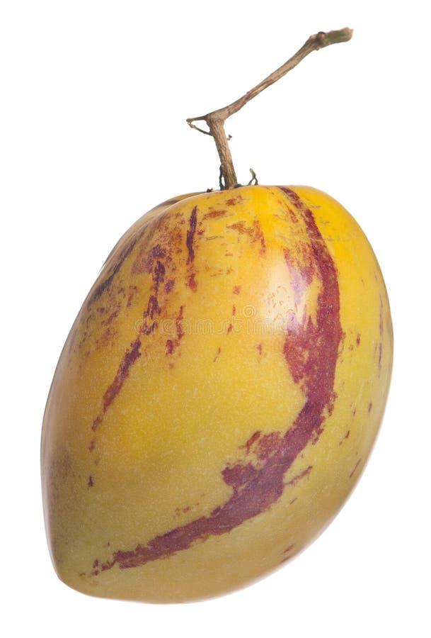 Fruit jaune de pepino images stock