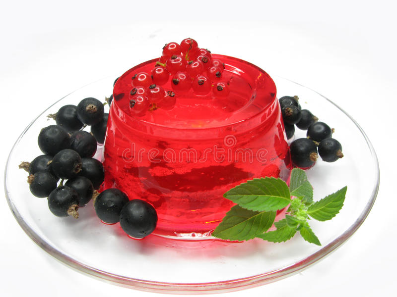 Fruit jelly dessert with red currant stock photos