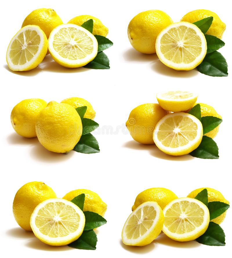 Fruit lemon stock photography