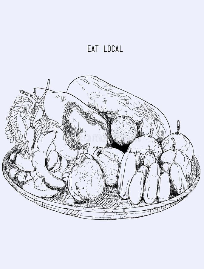 Fruit Local Dans Le Panier, Tiré Par La Main Illustration V Croquis ...