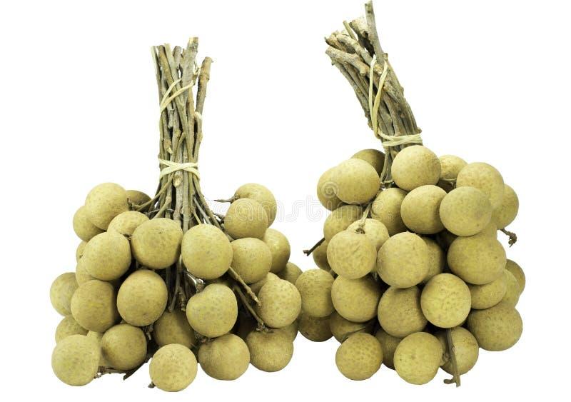 Fruit longan fresh isolated on white royalty free stock images