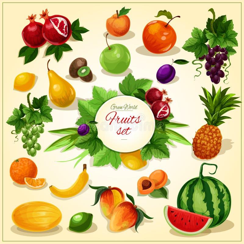Fruit mûr avec l'affiche de bande dessinée de feuilles illustration de vecteur