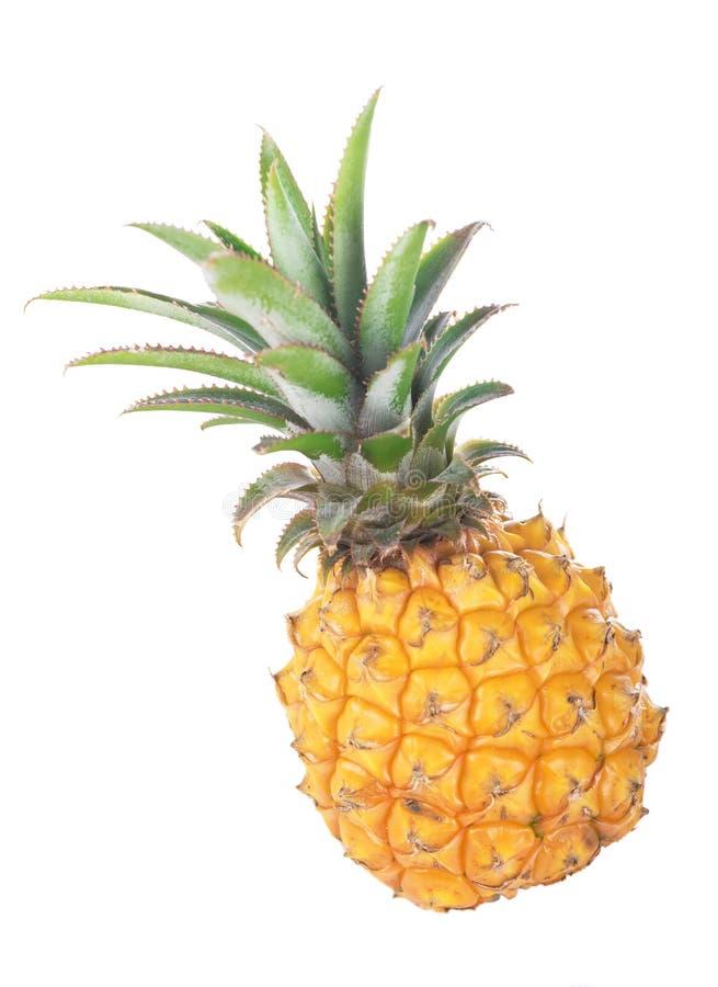 fruit m r d 39 ananas avec les feuilles vertes image stock image du fond exotique 35659257. Black Bedroom Furniture Sets. Home Design Ideas