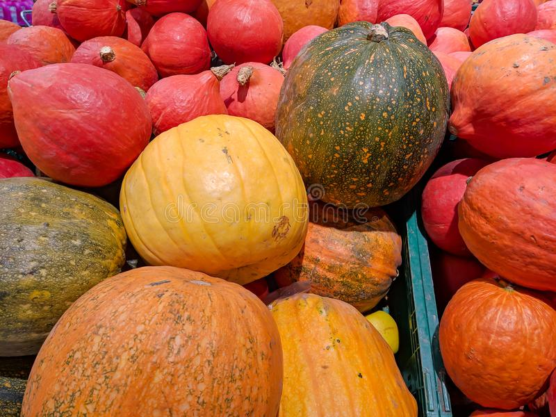 Fruit with many colors, melon and yellow and orange pumpkin stacked on a shop stand in a supermarket as a healthy lifestyle meal royalty free stock photography