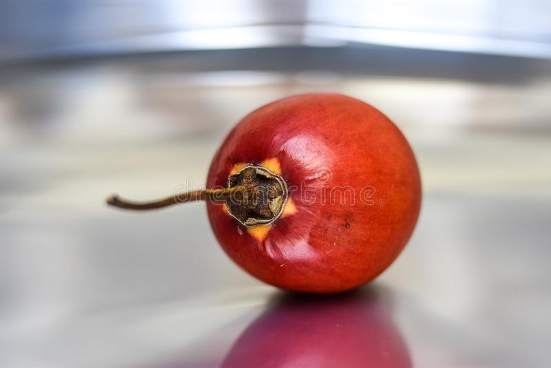 Fruit, Natural Foods, Close Up, Potato And Tomato Genus Free Public Domain Cc0 Image