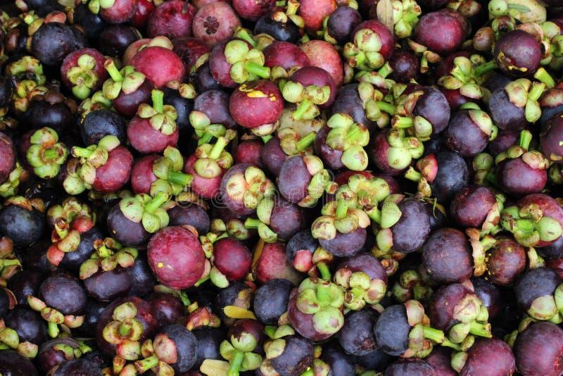 Fruit noir thaïlandais photo stock