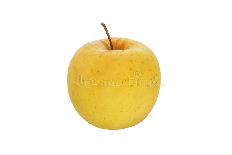 Fruit one yellow apple on a white background royalty free stock photo