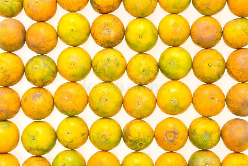 Download Fruit orange photo stock. Image du normal, doux, citron - 87705694