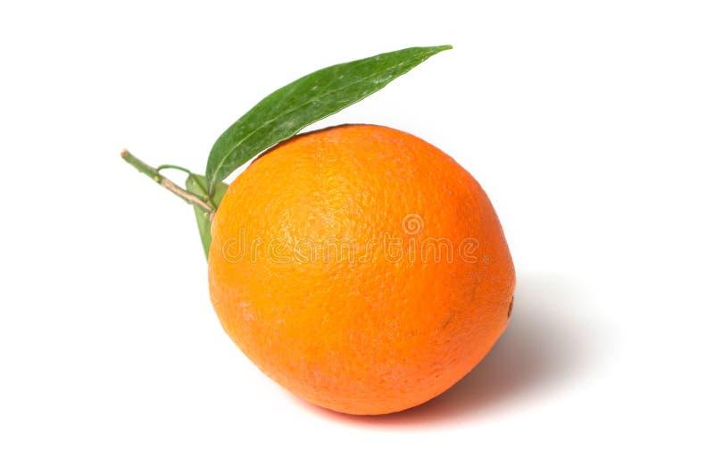 Fruit orange avec des feuilles sur le fond blanc photographie stock libre de droits