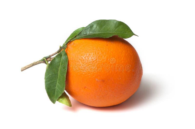 Fruit orange avec des feuilles sur le fond blanc images stock