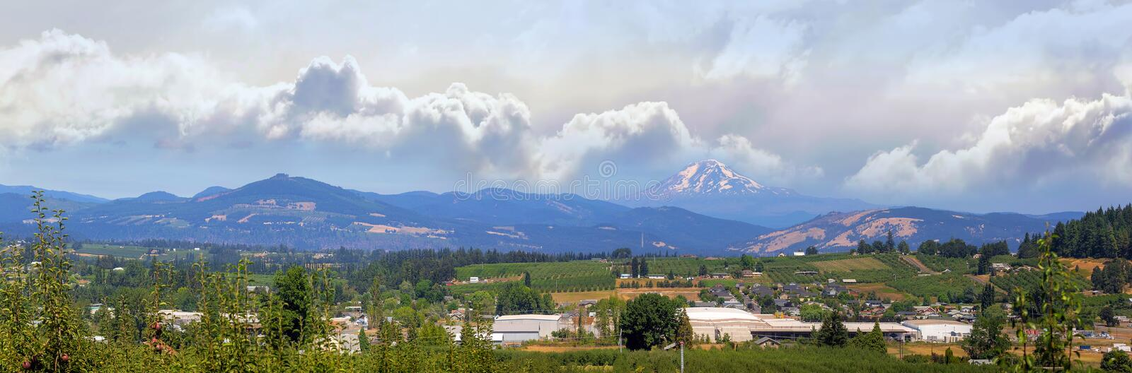 Fruit Orchards in Hood River Oregon Panorama. Fruit orchard farms in the valley of Hood River Oregon in summer Panorama royalty free stock photography