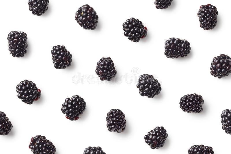 Fruit pattern of blackberries royalty free stock images